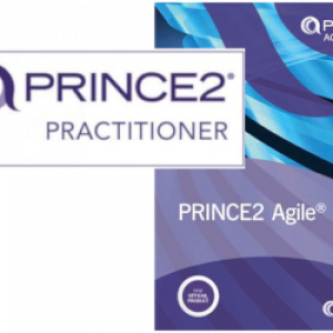 prince2 practionner chef de projet